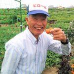 みんな健康になって欲しい。ただそれだけで趣味で野菜を作り続けて85歳!シソ農家の今村さんにインタビューしてきました!